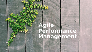 Agile Performance Management IS the Next Big Thing In HR